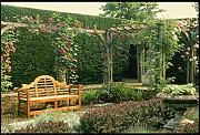 131091 Garden Seat In Rose Pergola With Berberis And Lavender A4 Photo Poster Print 10x8