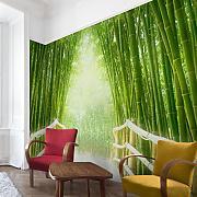 Fototapete Bambus Günstig Online Kaufen | Lionshome Fototapete Grn Wohnzimmer