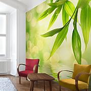 Tapeten 3d Fototapete Günstig Online Kaufen | Lionshome Fototapete Wohnzimmer Grun