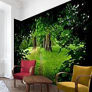 3d Tapete Günstig Online Kaufen | Lionshome Fototapete Grn Wohnzimmer