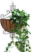 FPF Blumentreppe European Iron Wall Hanging Flower Pot Rack Wall Hanging Blume Rack Indoor Balkon Pflanze Regale Kreative Blumenregale ( Farbe : A-1 )