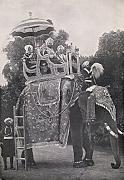 Ken Welsh / Design Pics – An Elephant Carrying East Indian Maharajas In The 19Th Century. From Die Gartenlaube Published 1905. Photo Print (30,48 x 43,18 cm)