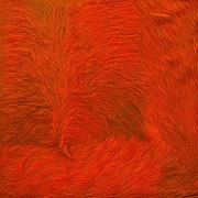 Kurth Kuhfellteppich Q3 mit Fellrand, orange Fell 200x200cm