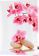 LED-Bild Orchidee, rosa