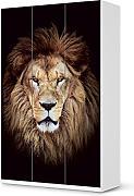 Klebefolie f r schr nke g nstig online kaufen lionshome for Klebefolie kleiderschrank