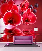 Tapete Riesen Orchidee rot 11027, 140x140cm