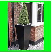 silverium vasen g nstig online kaufen lionshome. Black Bedroom Furniture Sets. Home Design Ideas
