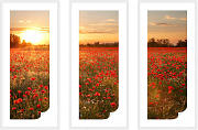 Wallprints - Wallprint-Set + Zierleisten Mohnfeld im Sonnenuntergang