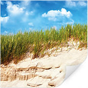Wallprints - Wallprint W - Ostsee Dünenlandschaft