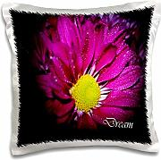 Produktbild: WhiteOak Photography Inspirational Floral Prints - Dream A Inspirational Purple Daisy - 16x16 inch Pillow Case (pc_31036_1)