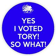 YES I angegeben TORY!! SO WHAT Pinback, pin-button, Geschenkidee, 45 mm