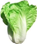Zhhlaixing Artificial Cabbage Vegetable Decoration for Kitchen Cabinet Decor