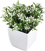 Zhhlaixing Artificial Plants/Faux Plant with White Pots for Indoor Decoration
